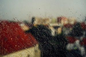 window-wet-rain